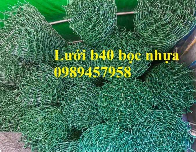 Lưới hàng rào B10, B20, B30, Hàng rào chăn nuôi mạ kẽm, Bọc nhựa 20x20, 30x3017