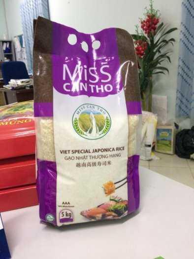 Bao đựng gạo, bao đựng đường, bao bột mì 10kg, 25kg, 50kg có in và không in6