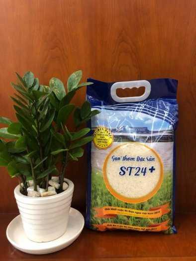 Bao đựng gạo, bao đựng đường, bao bột mì 10kg, 25kg, 50kg có in và không in1