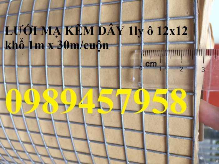 Lưới hàn mạ kẽm dây 2ly, 3ly ô 25x25, 50x50 giá sỉ3