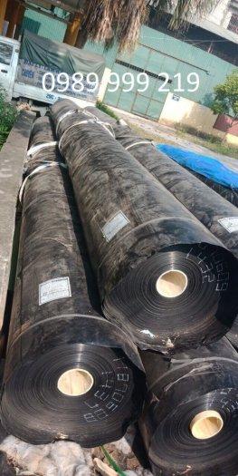 Bạt nhựa HDPE 0.3mm-k6-50m lót bể cá koi cty suncogroup việt nam 20210