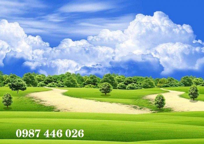 Gach tranh phong cảnh tự nhiên HP04740