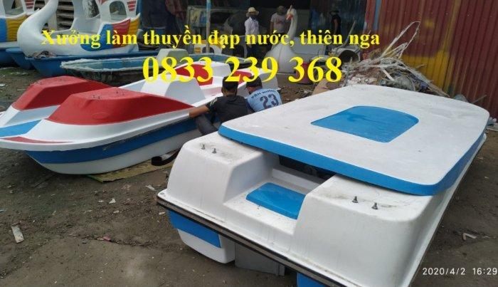 Thiên nga đạp nước chở 3 người, Thuyền thiên nga giá rẻ, Bóng nước tròn, Bóng nước hình trụ3