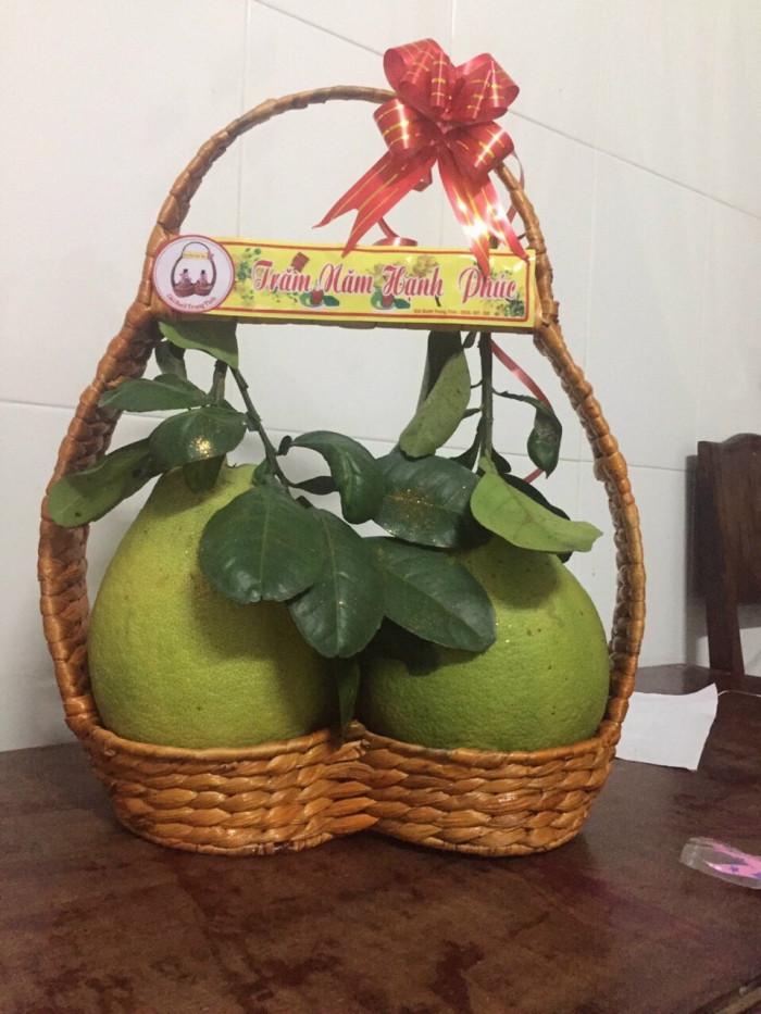 Giỏ quà tặng tết - giỏ bưởi lục bình 2 trái thân thiện môi trường1