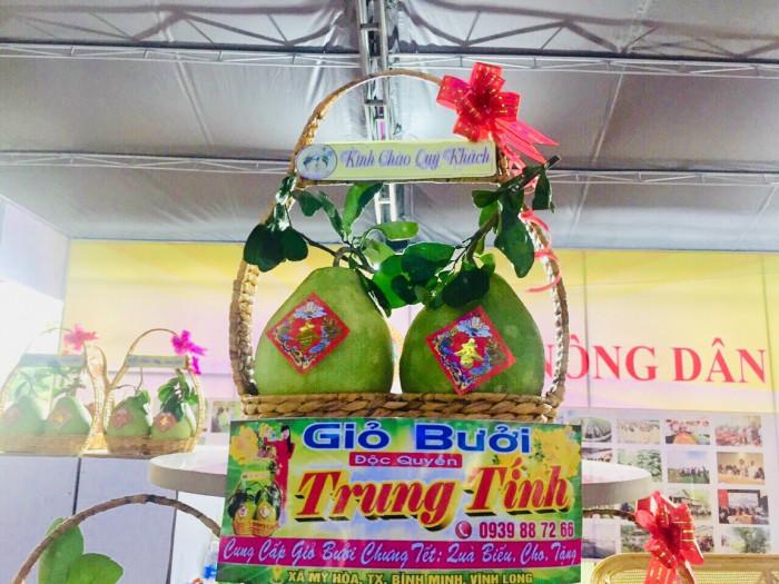 Giỏ quà tặng tết - giỏ bưởi lục bình 2 trái thân thiện môi trường2