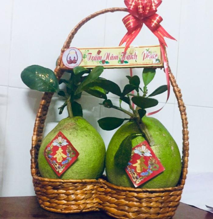 Giỏ quà tặng tết - giỏ bưởi lục bình 2 trái thân thiện môi trường4