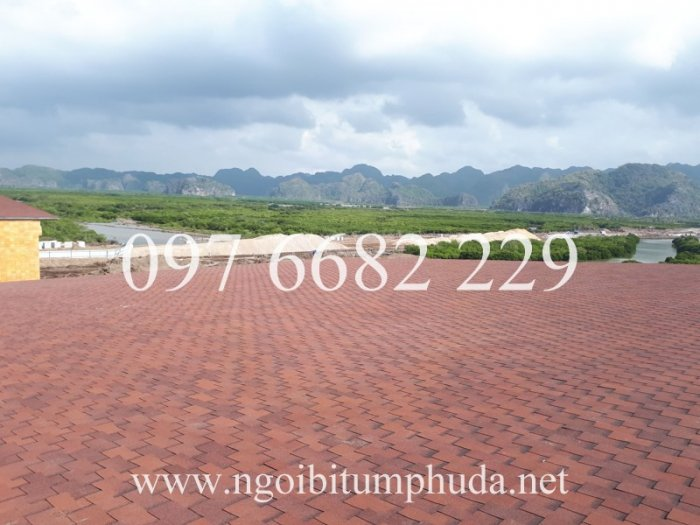 Nhà cung cấp Ngói bitum phủ đá asphalt Shingle6
