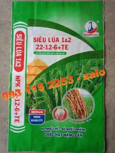 Bao đựng lúa gạo 5kg, 10kg, 25kg, 50kg mùa vụ Đông Xuân3