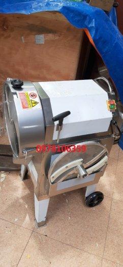 Máy cắt sợi đu đủ, máy thái sợi thái lát cà rốt khoai tây khoai lang1