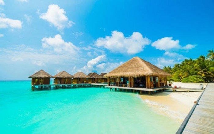 Tranh gạch 3d - gạch tranh 3d bờ biển cây dừa0