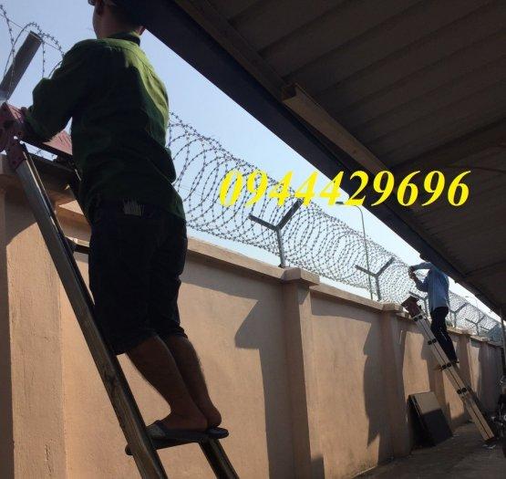 Thi công hàng rào Dây thép gai hình dao ĐK  45cm9