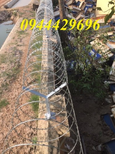 Thi công hàng rào Dây thép gai hình dao ĐK  45cm5