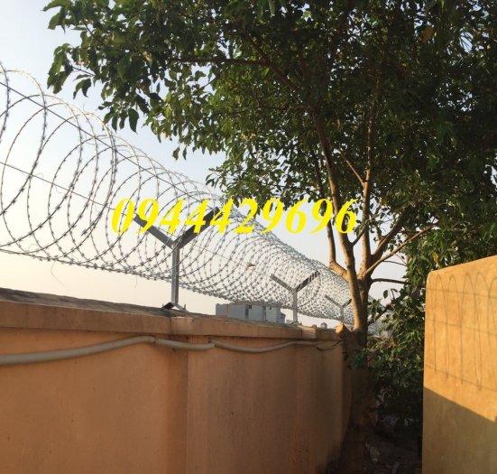 Thi công hàng rào Dây thép gai hình dao ĐK  45cm4