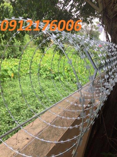 Thi công hàng rào Dây thép gai hình dao ĐK  45cm3