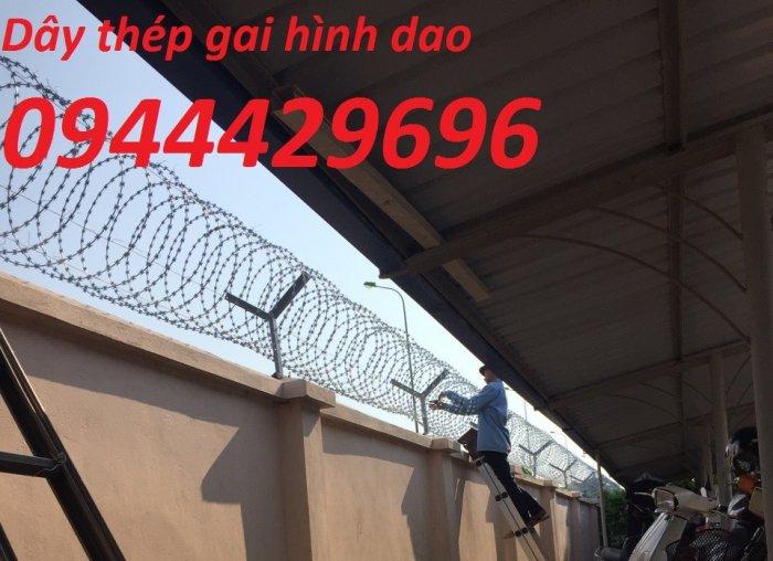 Thi công hàng rào Dây thép gai hình dao ĐK  45cm1