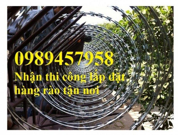 Hàng rào bảo vệ thép gai hình tròn, dây thép gai hình cầu4