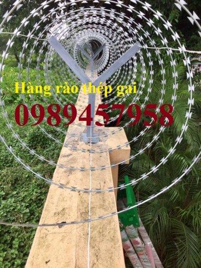 Hàng rào bảo vệ thép gai hình tròn, dây thép gai hình cầu2