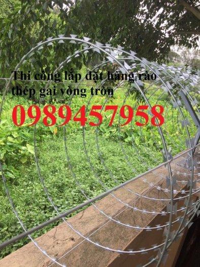 Hàng rào bảo vệ thép gai hình tròn, dây thép gai hình cầu1