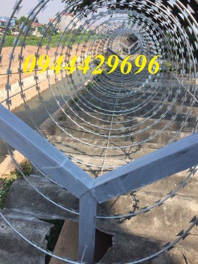 Dây thép gai hình dao Đk 45. 60.80cm lưới thép Nam Định12