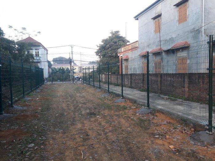 Hàng rào lưới thép hàn D5 a 50x150 mạ kẽm sơn tĩnh điện28
