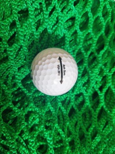 Lưới chắn bóng golf, lưới quây sân tập golf mini2