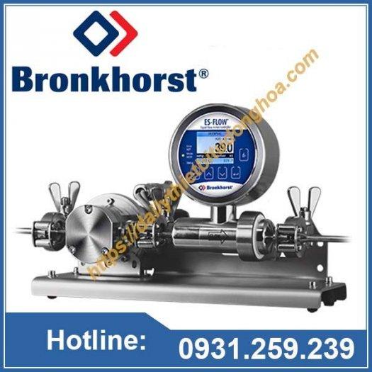 Đồng hồ đo lưu lượng Bronkhorst tại Việt Nam0