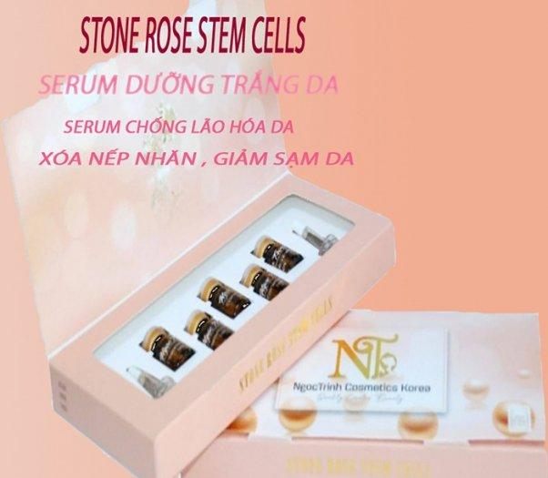Serum dưỡng trắng da trị nám mụn Stone Rose stem cells2