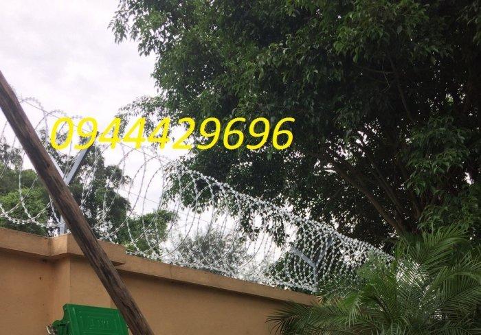 Dây kẽm lam - dây thép gai hình dao Đk 6014