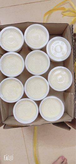 Sữa chua Phô mai Đà Lạt 1 lốc 10 hủ2
