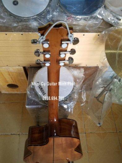 Cửa hàng bán đàn guitar giá rẻ tại huyện Củ Chi, Tphcm9