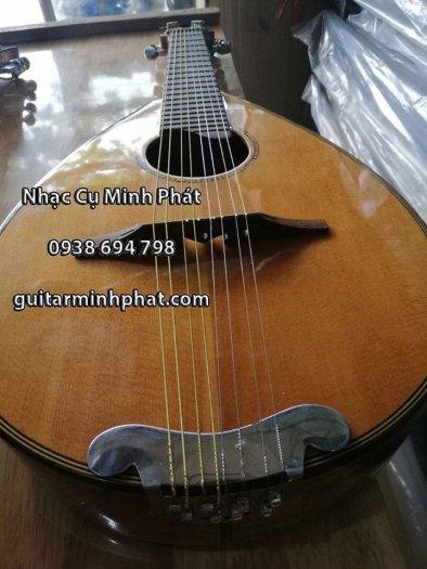 Địa chỉ bán đàn mandolin giá rẻ chất lượng nhất khu vực gò vấp tphcm2