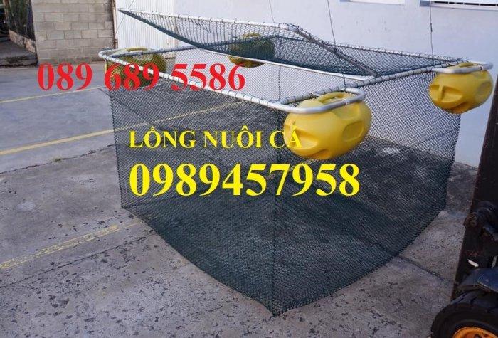 Lưới b40 bọc nhựa PVC 50x50, 60x60, 70x703