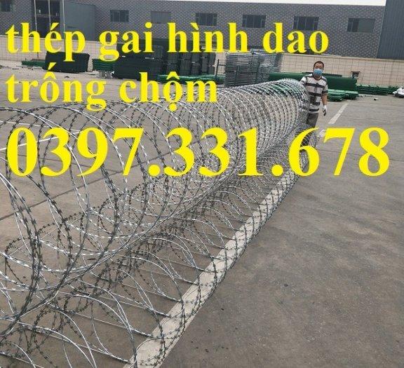 Thép gai hình dao, thép tường rào, thép gai mạ kẽm DK 35cm hàng sẵn kho tại Hà Nội3