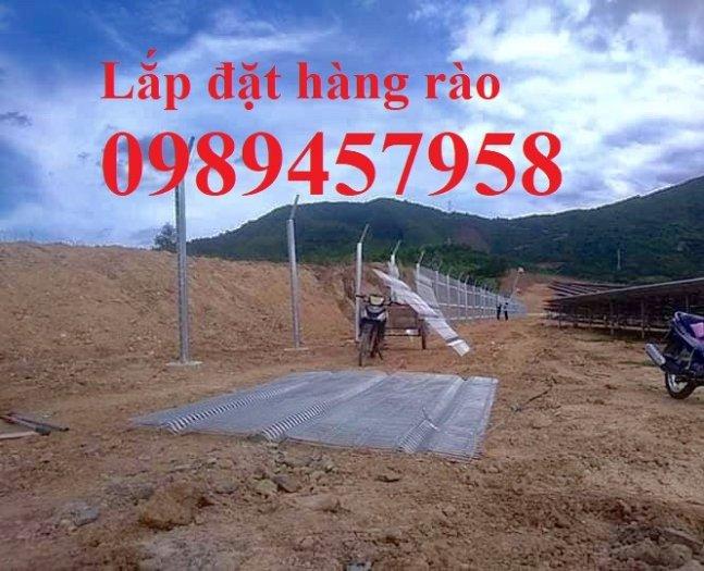 Hàng rào lưới thép hàn phi 5 ô 50*150, 50*200, 75*200 - Lưới thép hàng rào5
