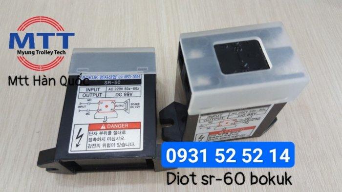 Diot sr-60 bokuk xuất xứ Hàn Quốc29