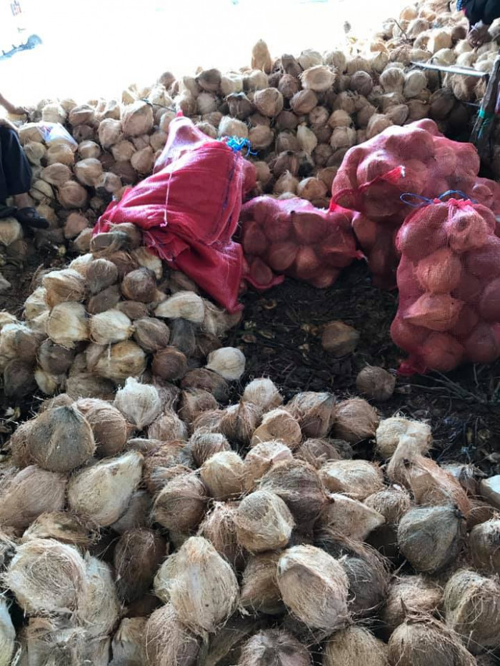 Vựa Dừa Bến Tre cung cấp dừa khô, tươi  toàn quốc  0935761797 (Phúc)  4