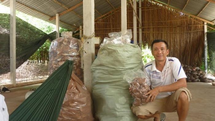 Mua Nấm linh chi đỏ Việt Nam -Trang trại nấm linh chi Củ Chi TPHCM -Gọi Mr Sơn - 09756030043