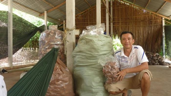 Mua Nấm linh chi đỏ Việt Nam -Trang trại nấm linh chi Củ Chi TPHCM -Gọi Mr Sơn - 09756030044