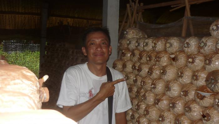 Mua Nấm linh chi đỏ Việt Nam -Trang trại nấm linh chi Củ Chi TPHCM -Gọi Mr Sơn - 097560300414