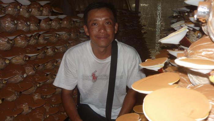 Mua Nấm linh chi đỏ Việt Nam -Trang trại nấm linh chi Củ Chi TPHCM -Gọi Mr Sơn - 097560300419