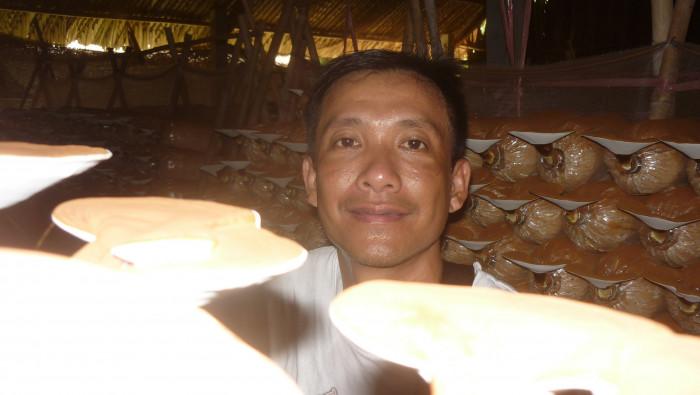 Mua Nấm linh chi đỏ Việt Nam -Trang trại nấm linh chi Củ Chi TPHCM -Gọi Mr Sơn - 097560300421