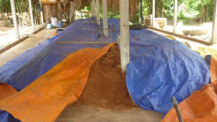 Mua Nấm linh chi đỏ Việt Nam -Trang trại nấm linh chi Củ Chi TPHCM -Gọi Mr Sơn - 097560300422