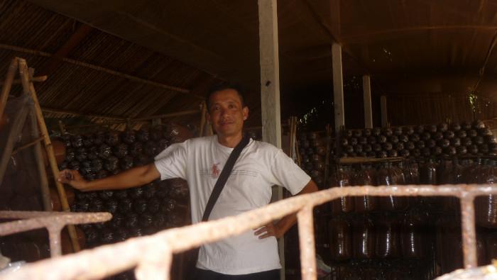 Mua Nấm linh chi đỏ Việt Nam -Trang trại nấm linh chi Củ Chi TPHCM -Gọi Mr Sơn - 097560300425