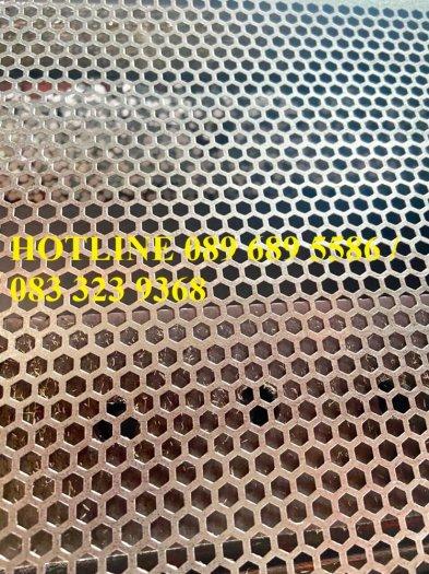 Lưới kim loại dập lỗ, Inox đột lỗ, tôn đột lỗ theo đơn đặt hàng4