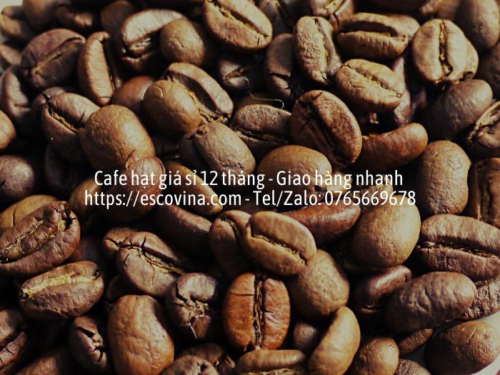 Cà phê hạt nguyên chất giá sỉ rang công nghệ cao từ Châu Âu4