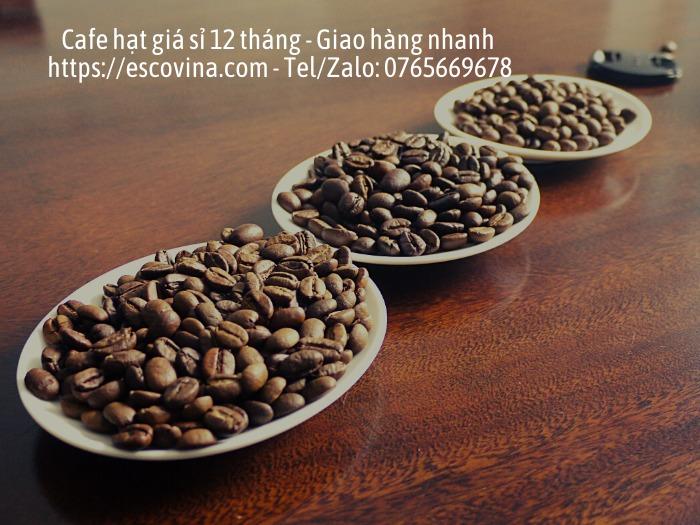 Cà phê hạt nguyên chất giá sỉ rang công nghệ cao từ Châu Âu3