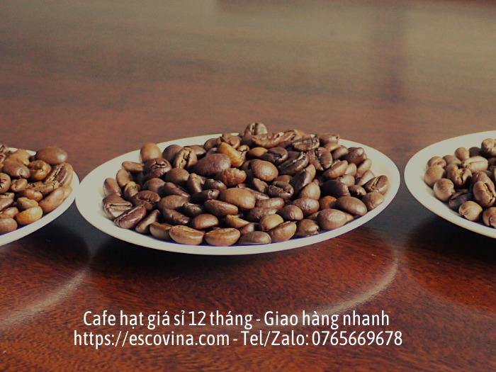 Cà phê hạt nguyên chất giá sỉ rang công nghệ cao từ Châu Âu1