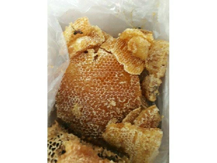 Mật ong rừng u minh tự nhiên nguyên chất3