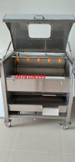 Máy rửa chà vỏ khoai lang, máy rửa củ cà rốt, máy rửa chà vỏ rau củ Qx6081