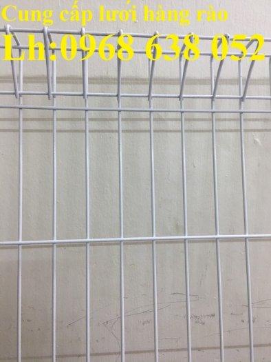 Lưới hàng rào D5a 50x150 gập 2 đầu tam giác13